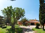 Villa surrounded by lush vegetation