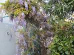 doccia esterna nel giardino
