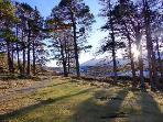 Beautiful walks in the Balmoral estate right from the door of the cottage