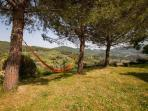 ..take a nap in a hammock overlooking the beautiful valley