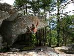 Famous Fontainebleau bouldering sites at proximity of the cottage