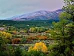 Taos Goji farm cabins are nestled in Sangre De Cristo Mountains and surrounded by national forest