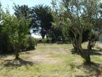 Le jardin, plein sud, sans vis à vis, donne sur la réserve naturelle;après l'étier,la piste cyclable