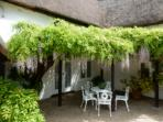 Wisteria with lovely shady spot to sit outside of the patio doors