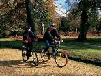 There are lots of cycle routes across the New Forest (maps can be borrowed)