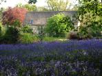 Heath Barn from the Bluebell Wood in springtime.