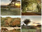 The New Forest national park is only a short drive or cycle away and can boast some of the best coun