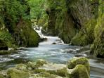 The Fairy Glen. A natural wonder not to be missed