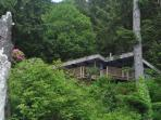 The cabin is perched on a hill high above the Pacific