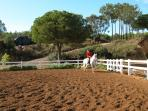 Excellent horseriding nearby .. El Rompido also
