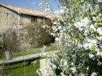 Balayres - en fleurs de printemps