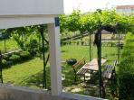 garden - picture 2