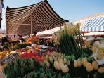 ...where the flower and fresh produce market is located...
