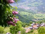 Spring in the Alps!