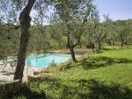 Le Cinciole pool