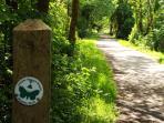 Wildlife trails on the doorstep