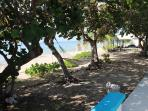 Sea Dreams - Harbour Beach Village Condominiums, St. Croix, USVI - relax in the hammock