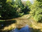 The River Test at Horsebridge.