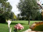 Main gardens of Kingham Lodge
