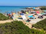 spiaggia della conchiglia (libera 10 minuti a piedi)