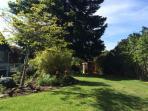 Side garden is growing quickly! June 1 2015
