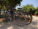 your bikes