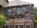 Fabulous wisteria!