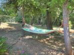 Hammock in the shade
