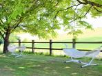 Enjoy a hammock in the shade of our Walnut Trees