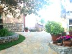 afternoon in our garden