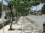 Village square with the vine covered walkways