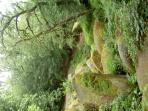 Forêt légendaire de HUELGOAT