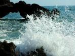 panoramica del mare di Fiumicino