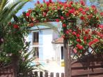Entrance to the villa through the rose arch