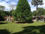 Cuenta con jardines y espacios grandes que garantizan la privacidad