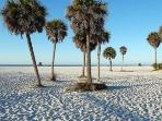 Amazing white sands of Siesta Key are said to be from healing, natural quartz.