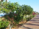 Jardines Marina de la Torre. Paseo frente al mar