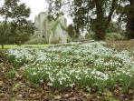 Snowdrops at Lochinch Castle and Castle Kennedy Gardens