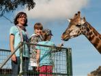 MOGO ZOO ONLY MINUTES AWAY - HANDS ON EXPERIENCES - FEEDING GIRAFFE ONE OF THE FAVOURITES