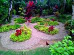 The well maintained grounds leave you feeling in tropical paradise!