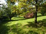 Triscombe Garden