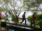 Un circuit de randonnée pédestre, la balade de l'étang , a son point de départ à100 mètres du gîte