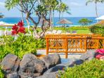Mature Tropical Landscaping with Ocean Views Abound
