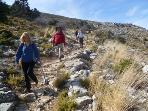 Walking in the High Sierra in Spring