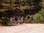 Walking Party on the El Burgo riverside walk