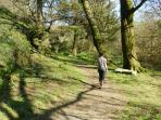 Nature trail on site - take a stroll through the pretty copse before you follow the babbling brook