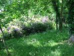 Unepartie du jardin du Pont ricoul, chambres d'hôtes en bretagne.