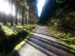 Marvellous walks and cycling in the area (owners' photo)
