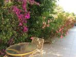 Kera has lots of lovely flowering plants and shady places to sit