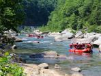 Raft class 3 &4 rapids down the Nolichucky River with one of the local outfitters like USA RAFT.